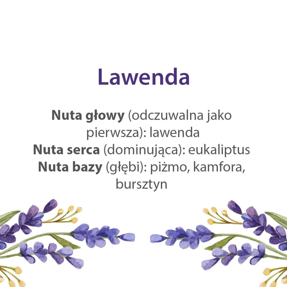 lawenda_nuty_zapachowe