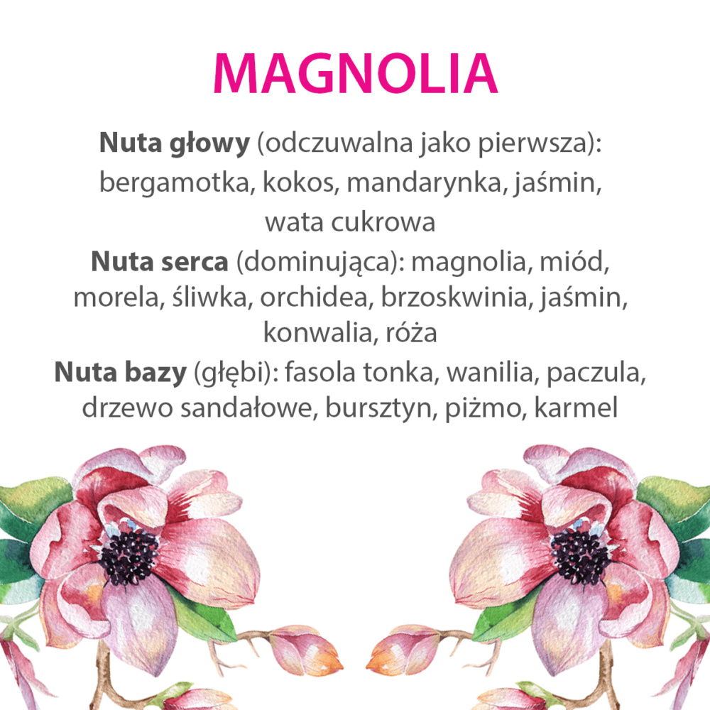 Magnolia_nuty_zapachowe_MiBellumi